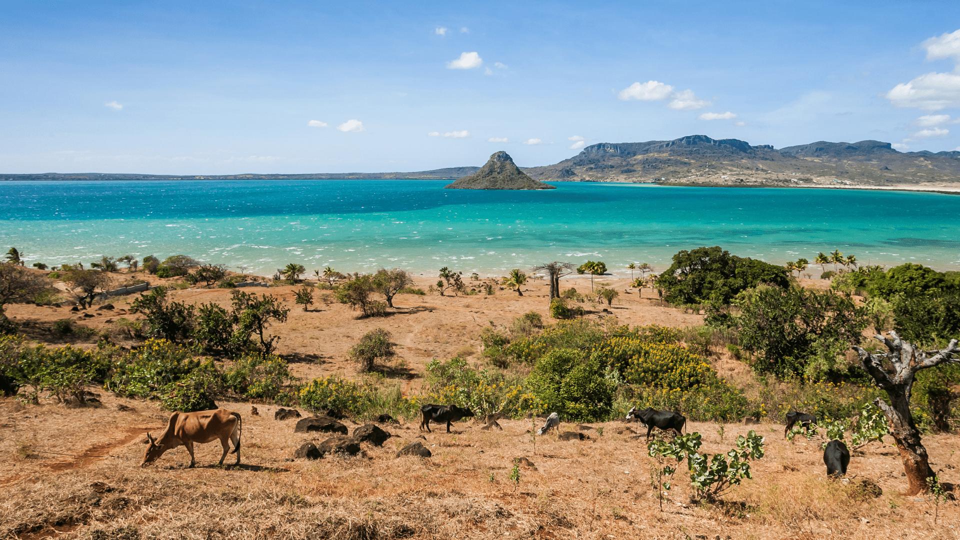 Madagaskaro peizažas