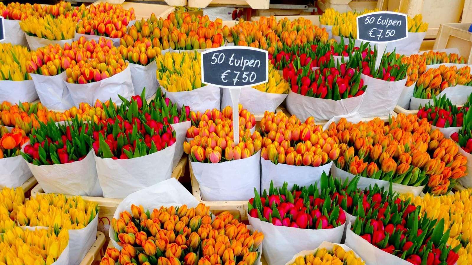 Amsterdamą spalvina ir gėlių turgeliai, esantys už kiekvieno kampo