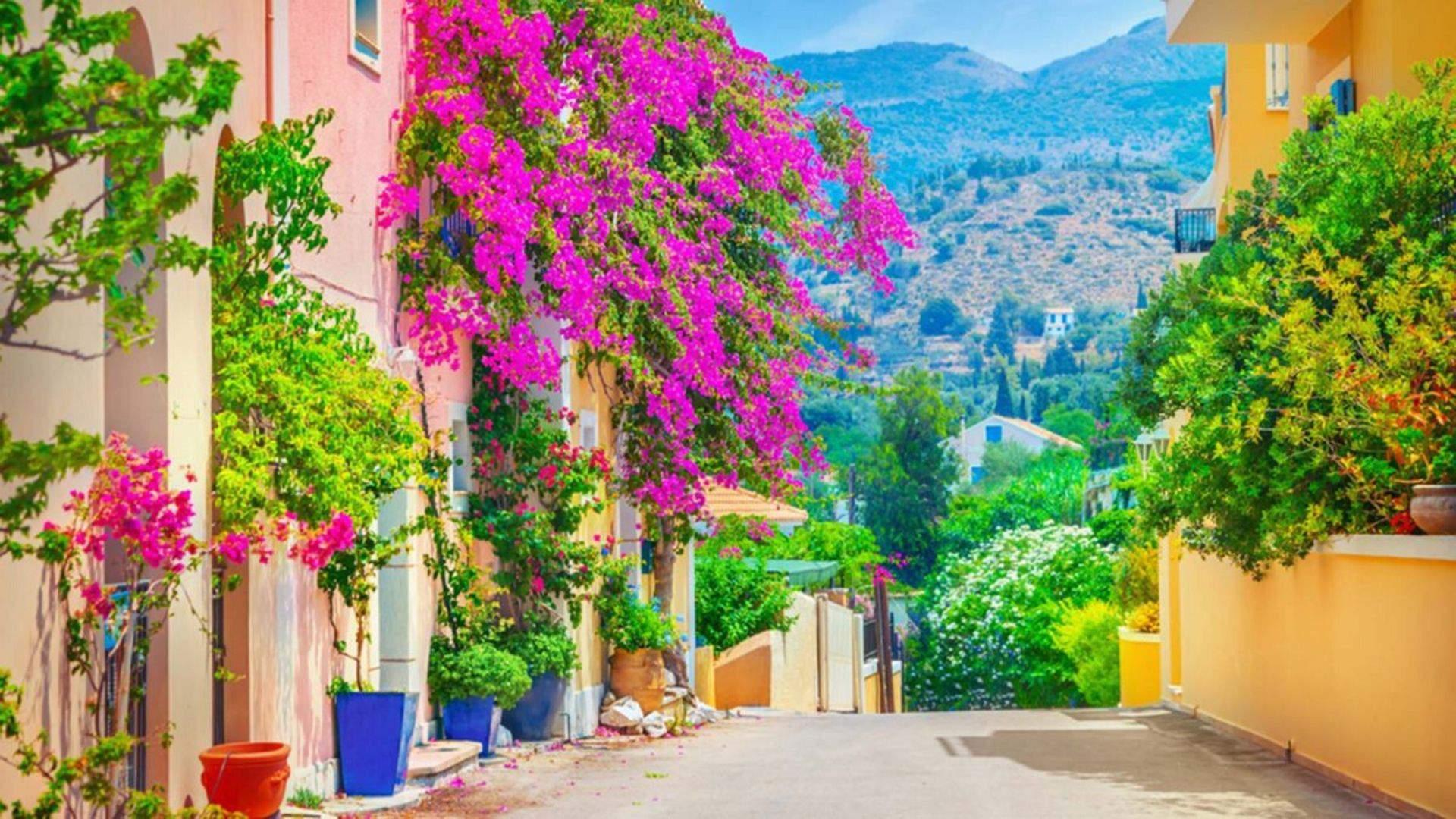 Kefalonijos gatvėse - gėlių aromatai ir ryškios spalvos