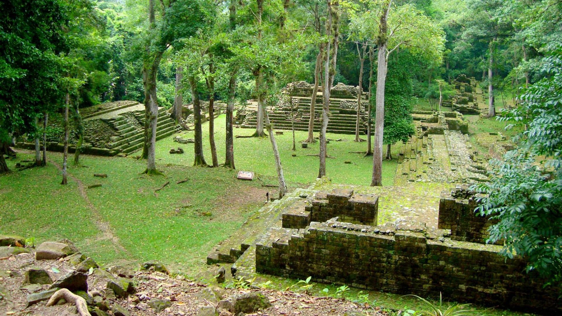 Kelionės po Centrinę Ameriką metu apsilankykite majų šventovės griuvėsiuose Hondūre