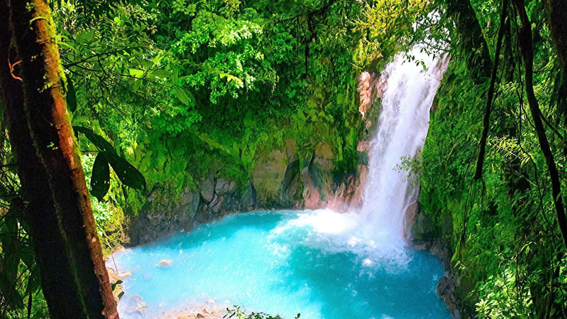 Kerinčio grožio kriokliai Kosta Rikoje