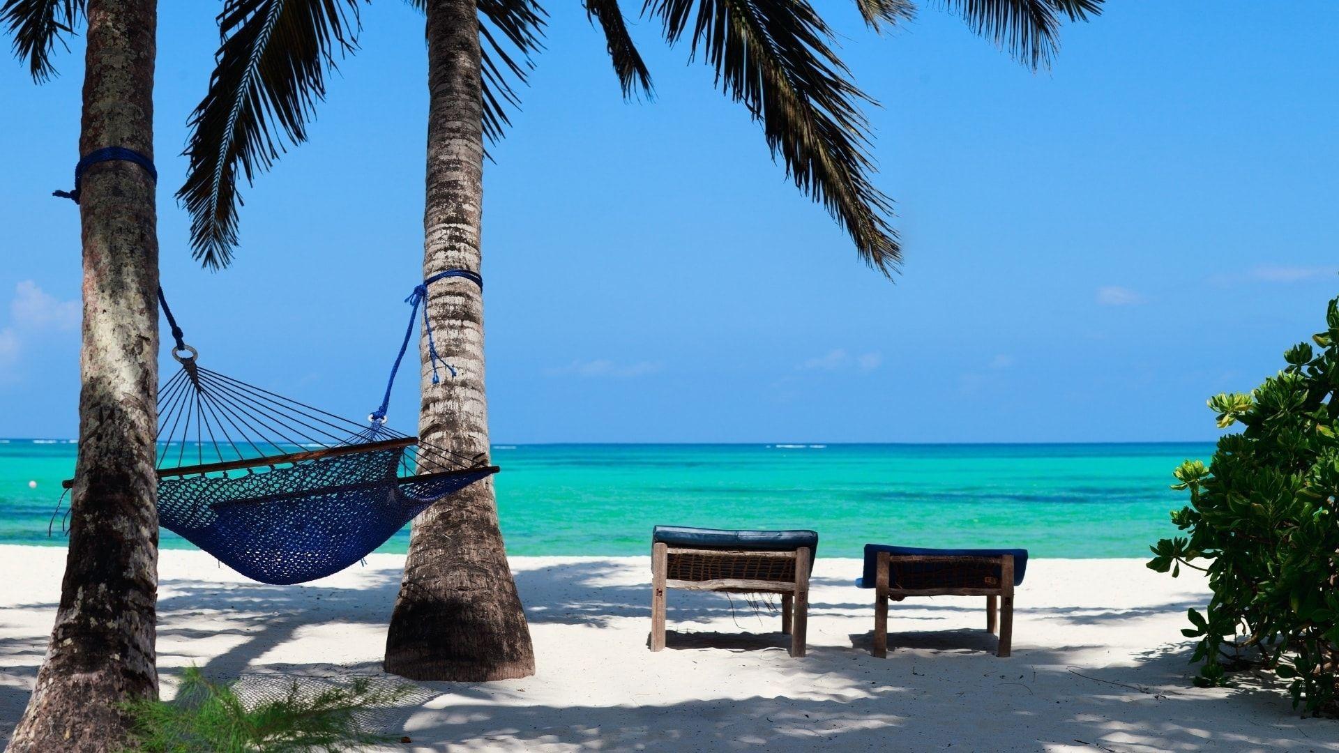 Laukinis paplūdimys
