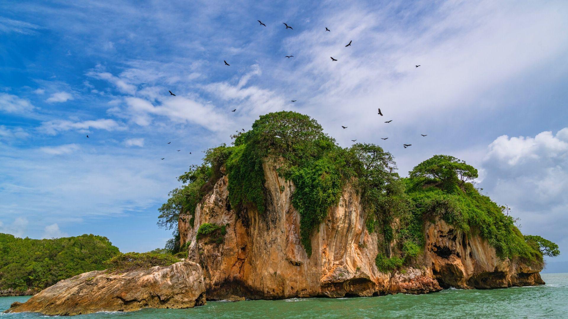 Los Haitises Nacionalinis parkas, garsėjantis mangrovių miškais