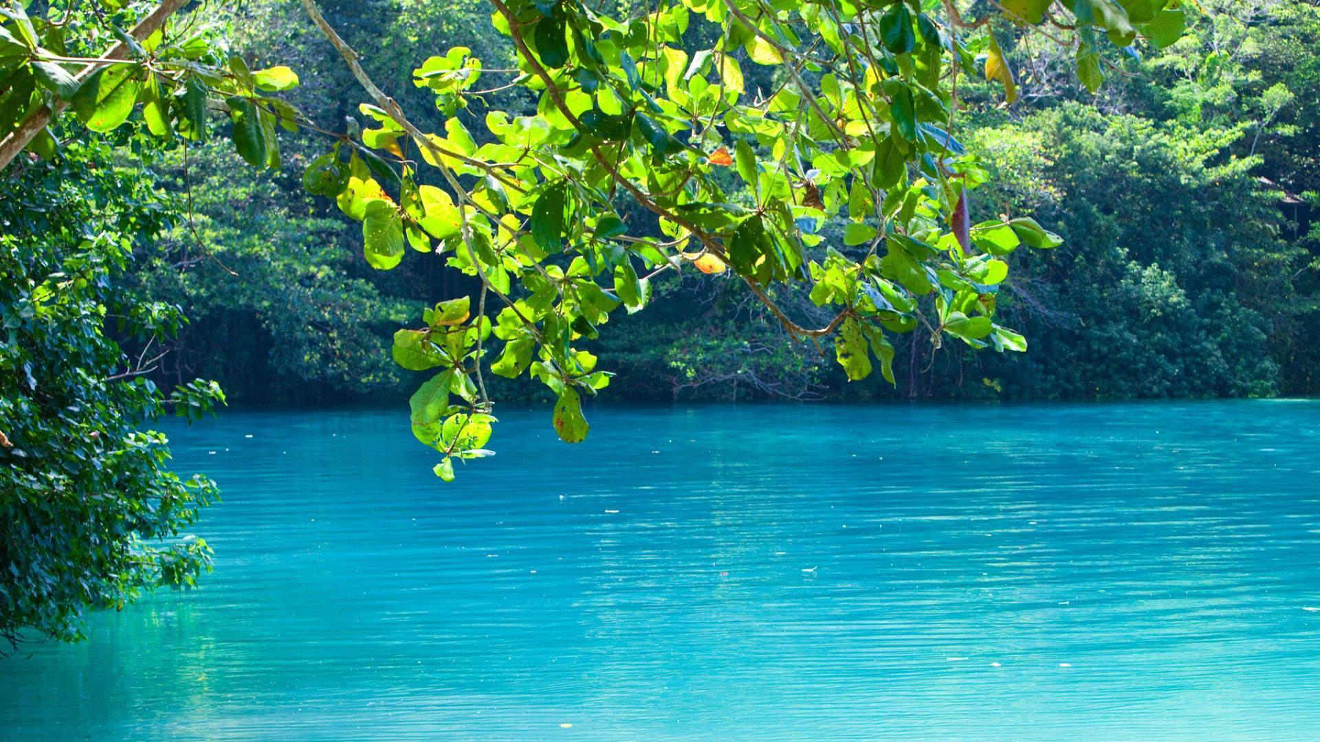Mėlynoji lagūna - kerinčio grožio kampelis Jamaikoje