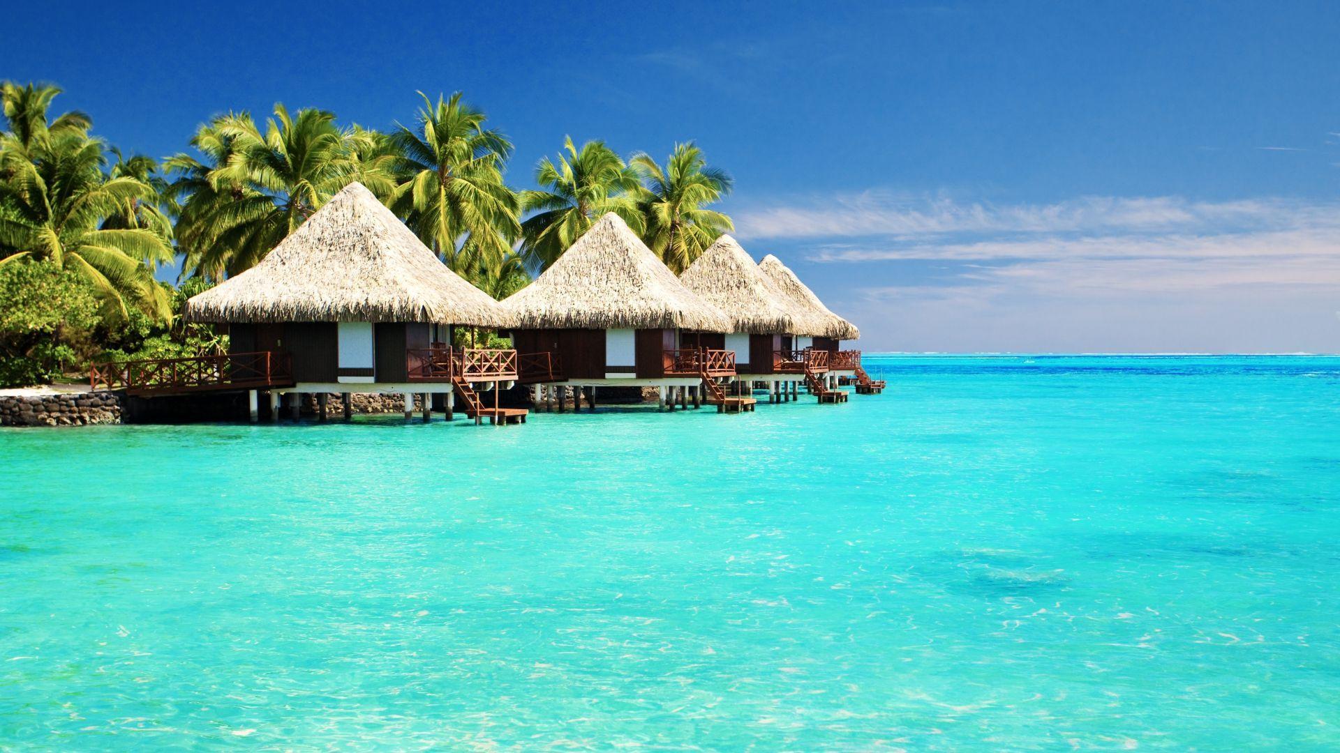 Nameliai Maldyvuose