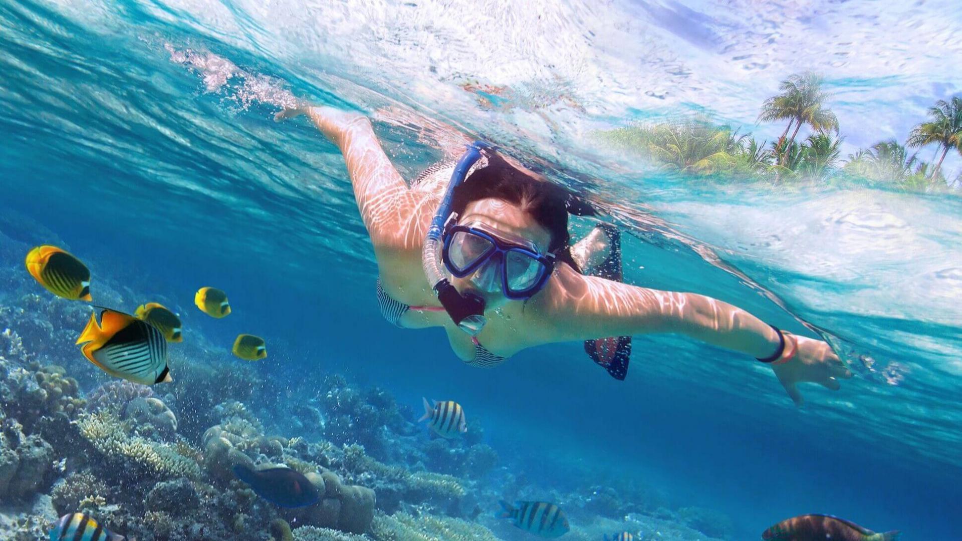 Leiskitės į pažintį su povandeniniu gyvenimu Ramiajame vandenyne