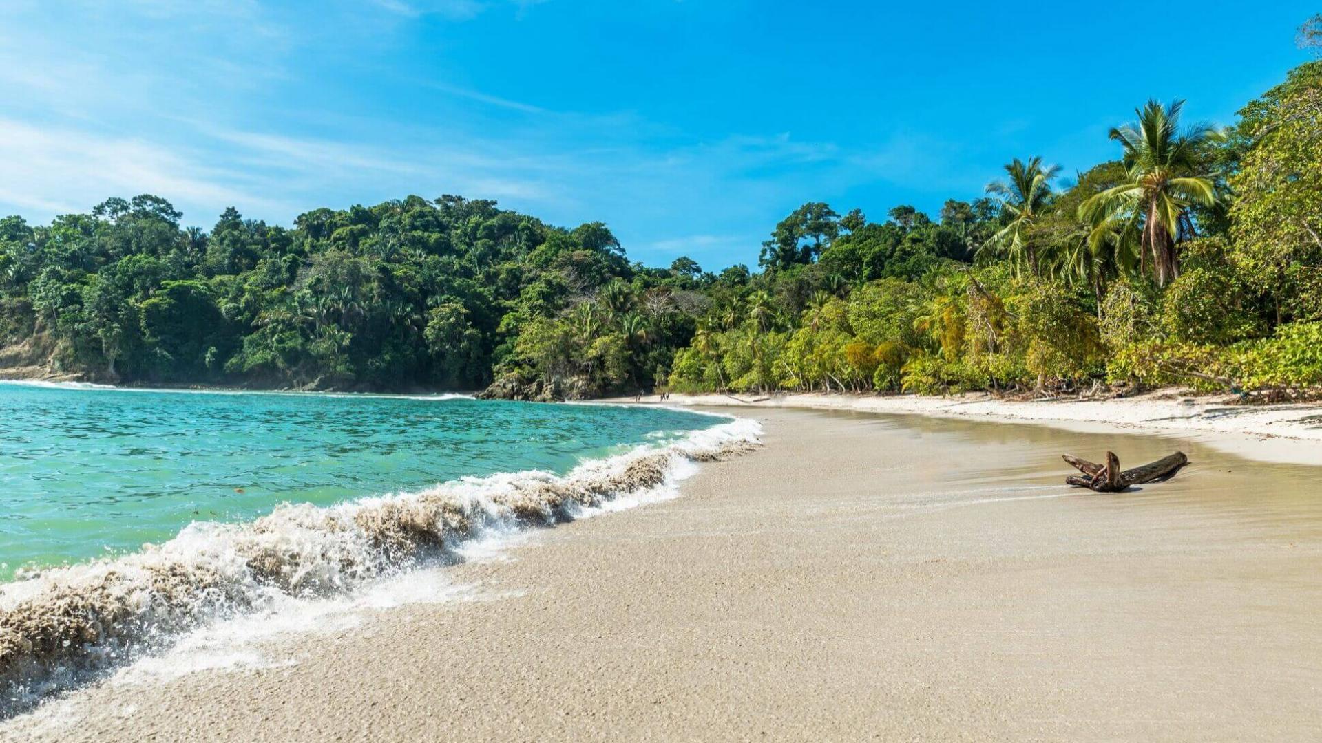 Nuostabi laukinė gamta Puntarene