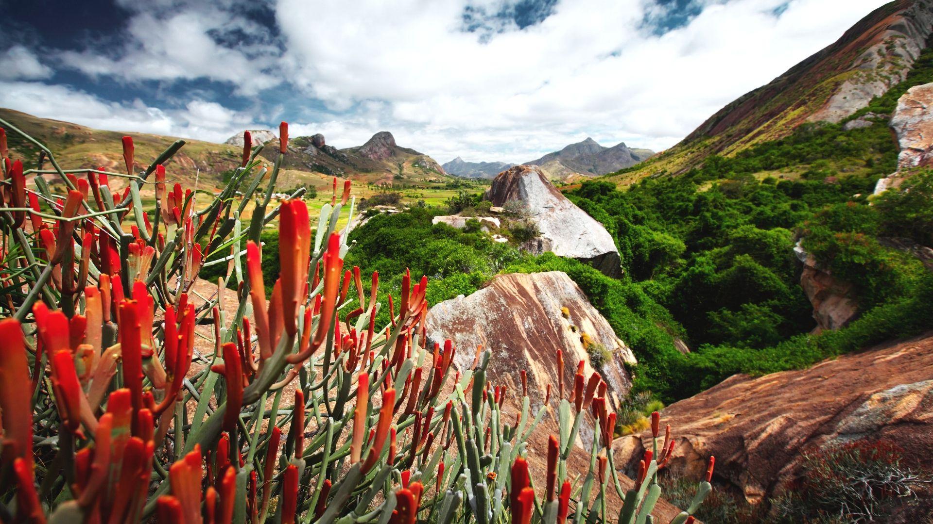 Pasigrožėkite Madagaskaro apylinkėmis