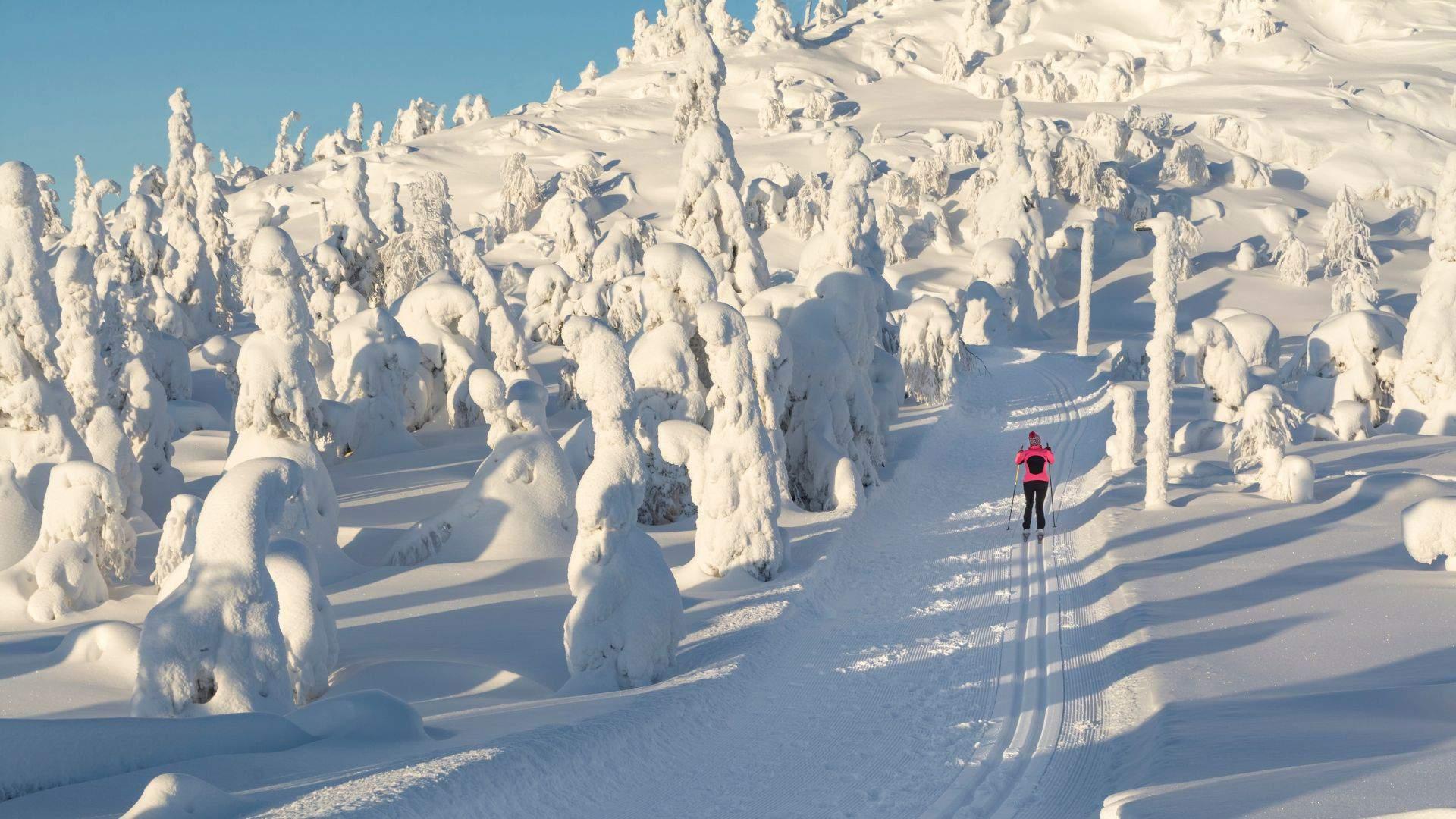 Pasinerkite į žiemos pasaką snieguotoje Laplandijoje
