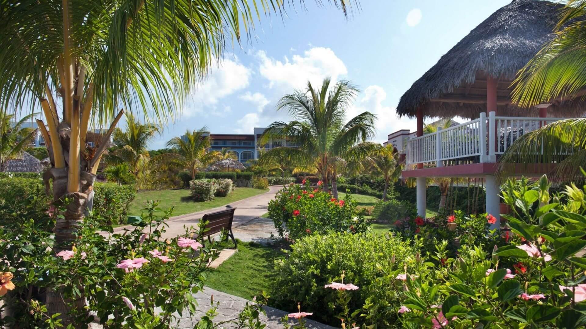 Pasivaikščiokite viešbučio teritorijoje tarp žaliuojančių tropinių augalų
