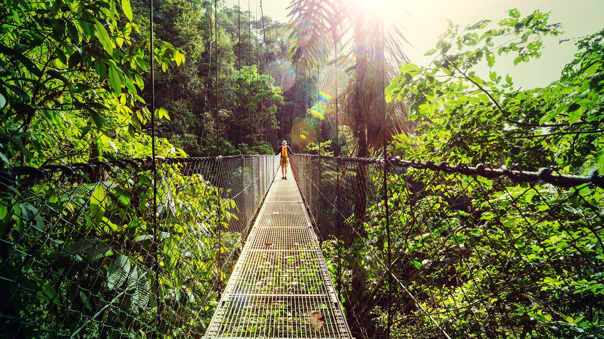 Pažinkite nuostabias Kosta Rikos džiungles