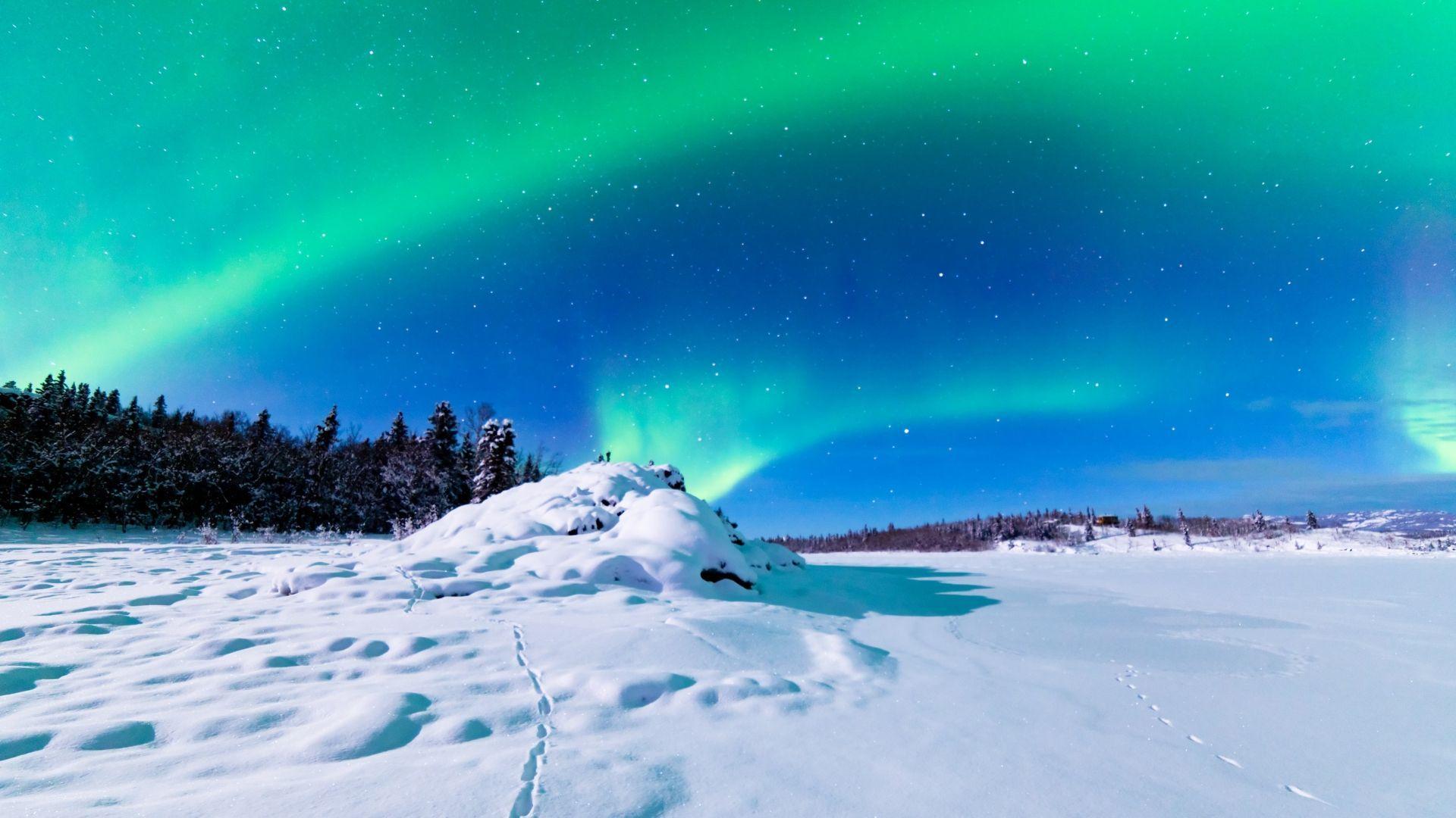 Aliaska - viena vietų, kur įmanoma pamatyti Šiaurės pašvaistę