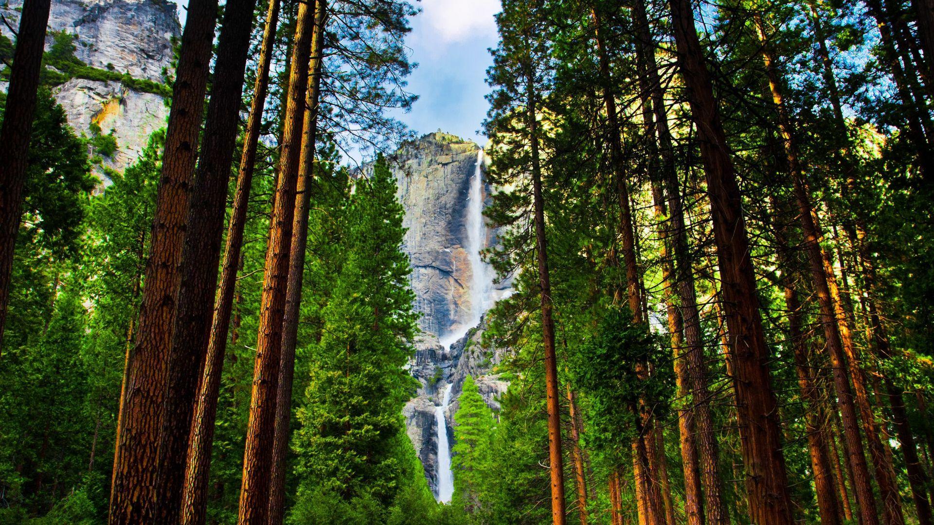 Užburiantis Yosemite parkas