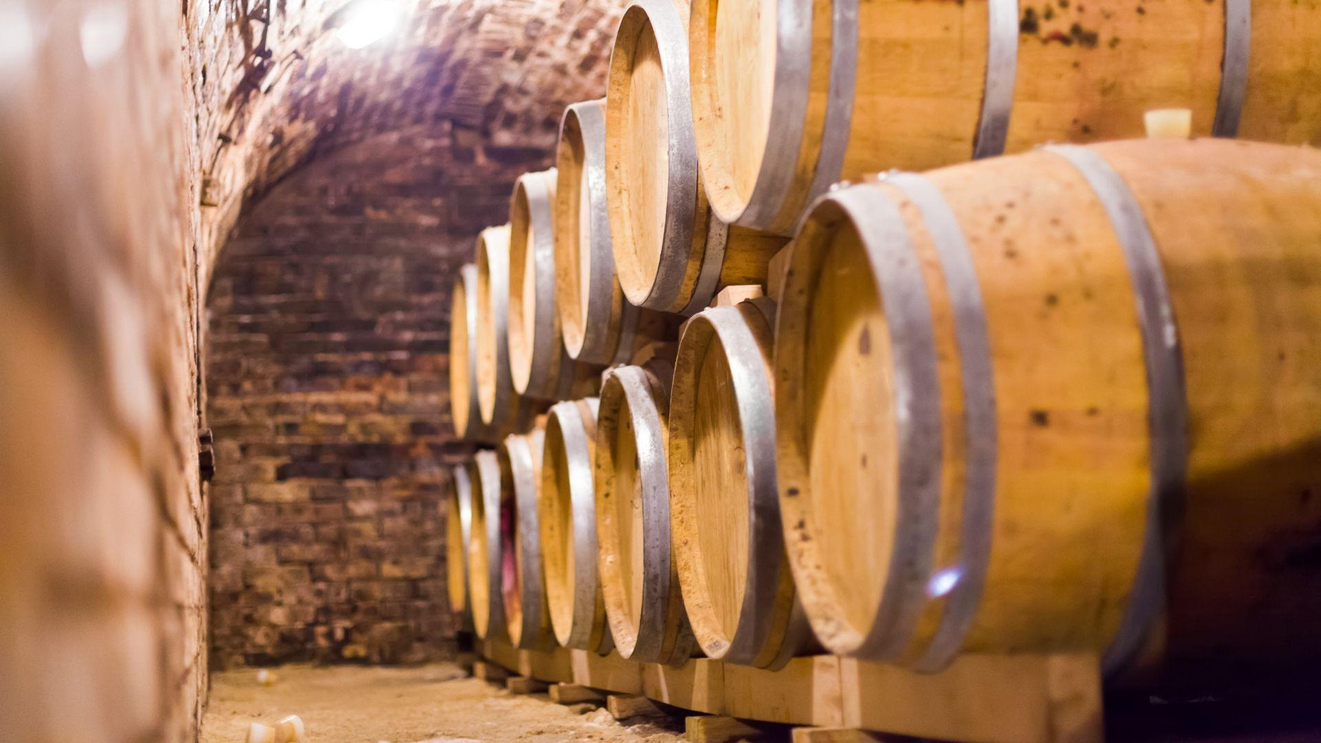 Vyno rūsys